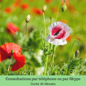 sexologue antibes, Therapeute de couple antibes sexologue de couple antibes, sexologue et Therapeute antibes, sexologue consultation par telephone sexologue par telephone
